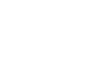 Manzetti Group, LLC